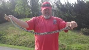 TT snake